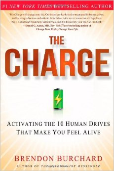 "Do it – but do it with passion. Book review of ""The Charge"""